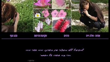 אילה וייס   צילום טבע - פרחים, שקיעות, נוף, בעלי חיים
