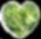 Green Veggies.png
