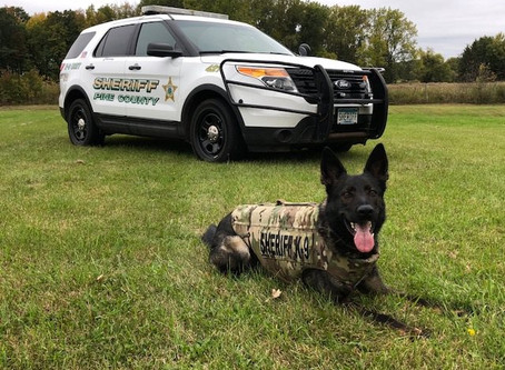 Pine Co. Sheriff's Office Retires K9 Chewy