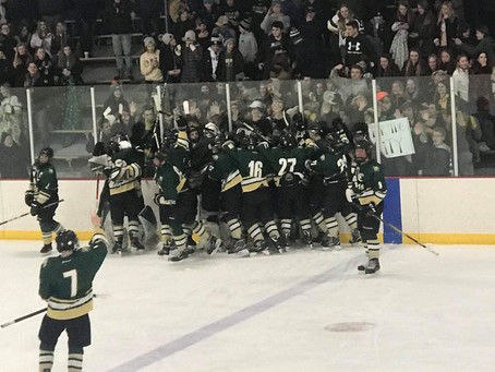 Wildcats Advance to the Semi Finals With Win Over North Branch