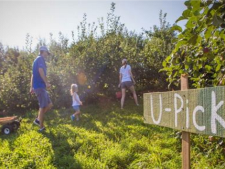 Agritourism Workshop in Mora Scheduled for Later this Month