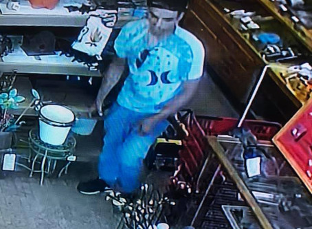 Two Men Steal Tools from Pine City Business