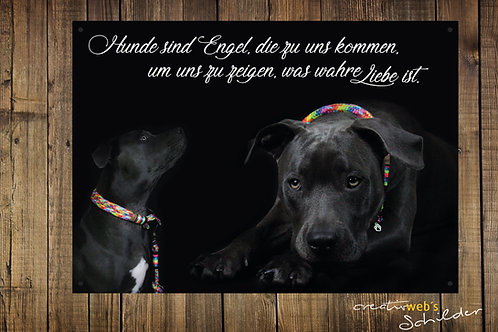 Hundeschild ... wahre Liebe