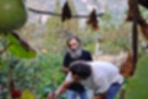 Luigi and Anthony in Luigi's family garden, Caulonia, Calabria, Italy