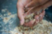 forming cookies, Soumaya's Louzina, Lebanese cookie recipe