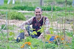 Ikram from Turkey working on Grol Graden, Cyprus