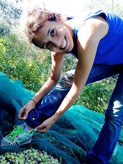 Leila Elamine Harvesting Olives in Monasterace, Italy