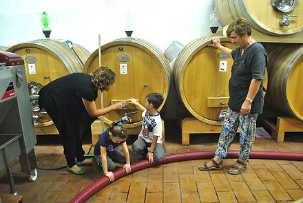 Valentini Family in the Wine Room, Montefalco, Italy