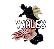 wales map for wesbite.png