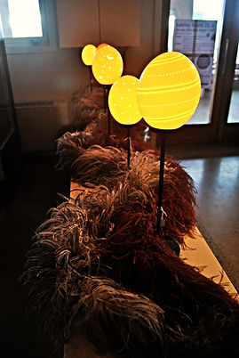 Ostrich Eggs on Display at Sahlins Struts, an Ostrich Farm in Börlange, Sweden