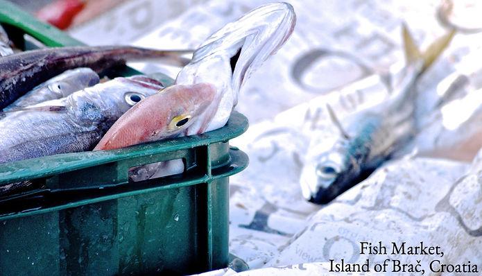 Fresh Fish - Fisherman's catch in Postira, Brač, Croatia