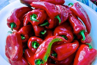 Red Bell Peppers for Ajvar, Imotski, Croatia