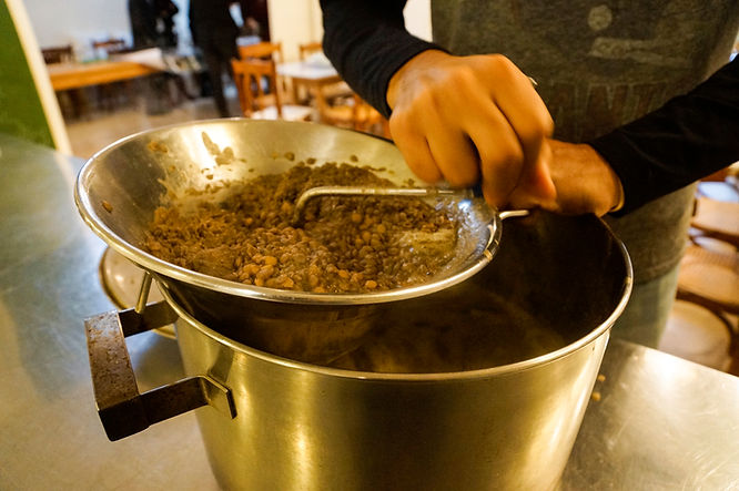 Processing Lentils, Mujaddara Recipe, Beirut, Lebanon