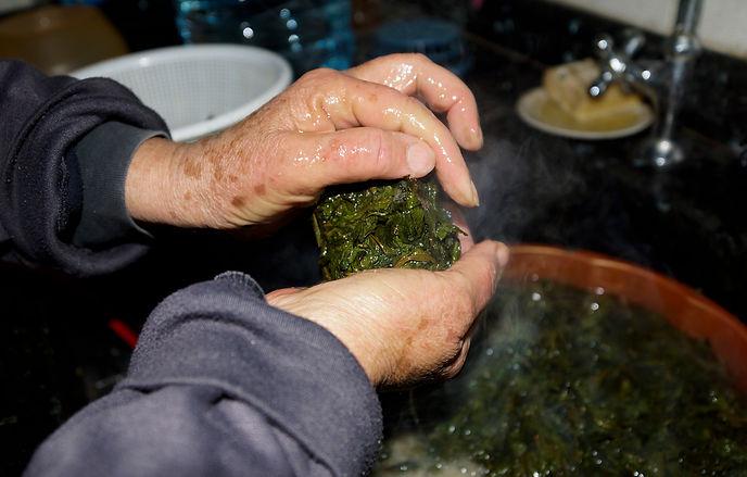 straining molokhia leaves in hand, lebanese recipes