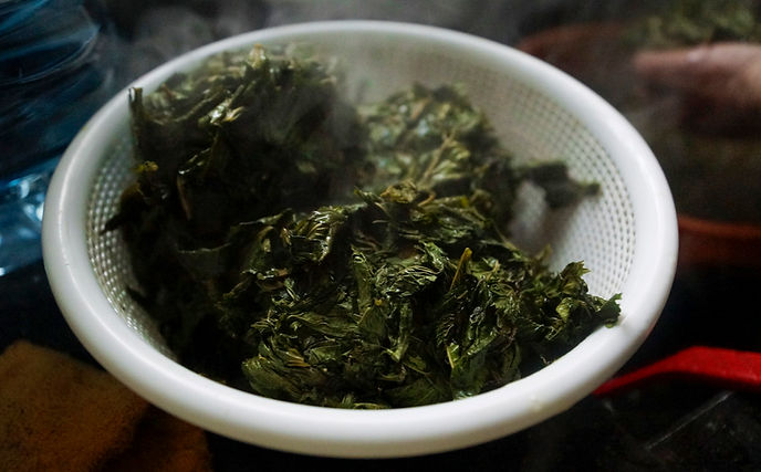 draining the molokhia leaves, molokhia recipe, lebanese recipes