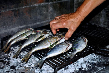 Domina Grilling Fish in Traditional Wood Fired Oven in Supetar, Brač, Croatia