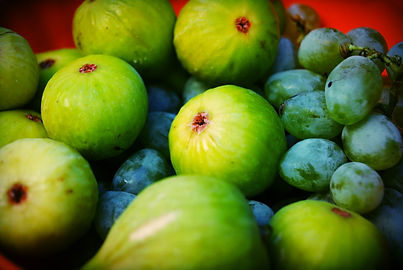 Organic figs and grapes in Supetar, Brač, Croatia