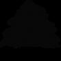 logo lebanon website cedar tree no shado