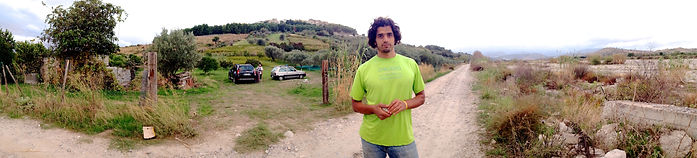 Anthony Morano Standing in front of Olive Grove