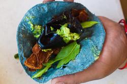 avocado blue taco