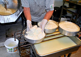 Ladling the Curds into Pans for Ostkaka Recipe, Sweden