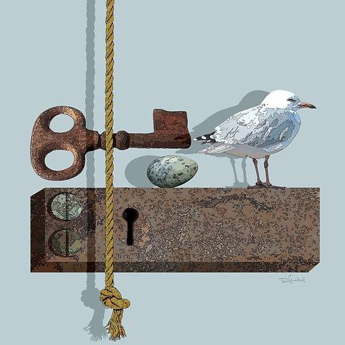 The Seagulls Egg