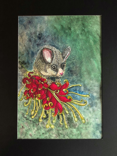 Possum on a Blossom