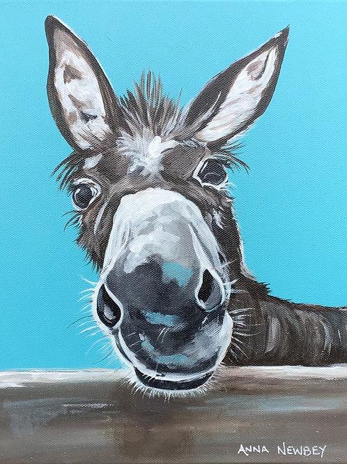 Donkey Named Hee-Haw