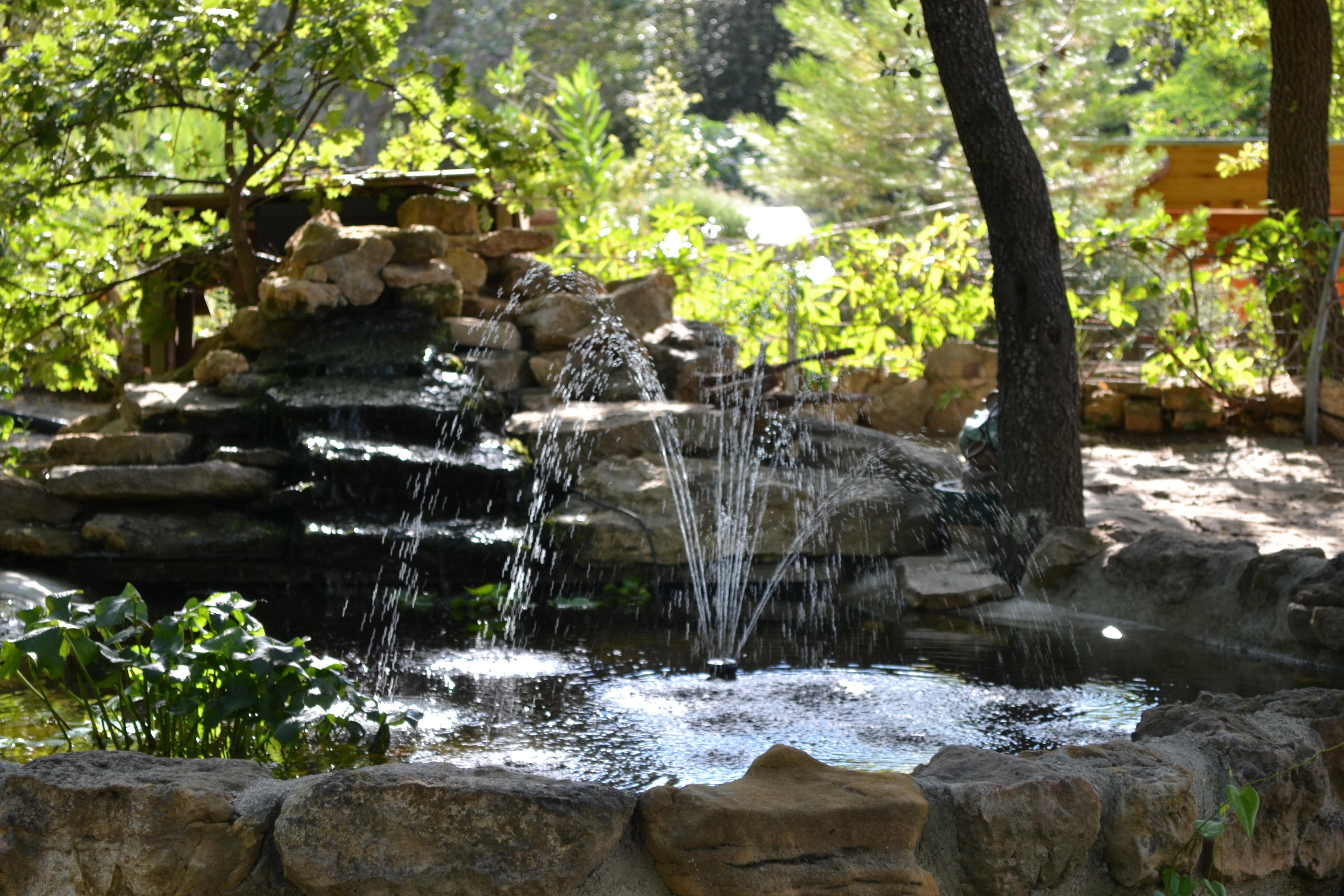 La fontaine sous les pins