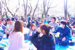 2019年3月お花見IN井の頭公園