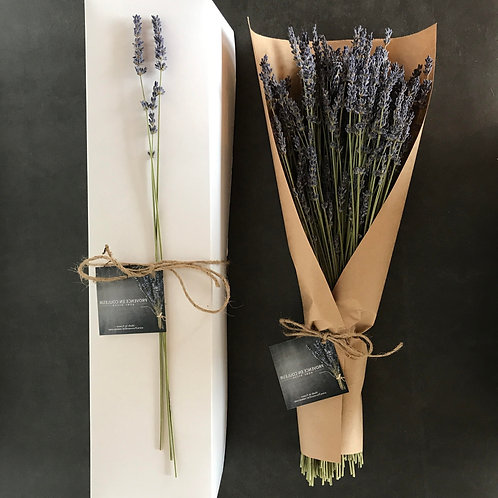 Lavender Bouquet with Box