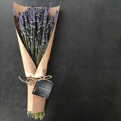 Large Lavender Bouquet