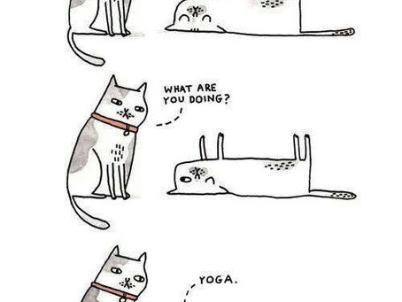 A Brief Bit of Time as a Lazy Yogi