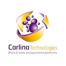 Carlina Tech. Logo