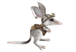 Bilby boy costume