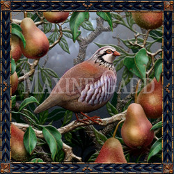 A Partridge In A Pear Tree copy copy