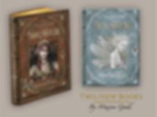 kickstarter banner book copy copy.jpg