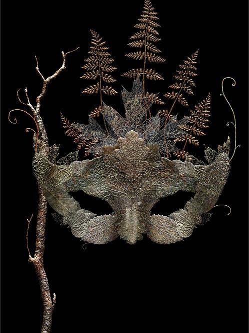 copy of Dried Leaf Mask