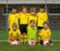 f-junioren gelb.jpg