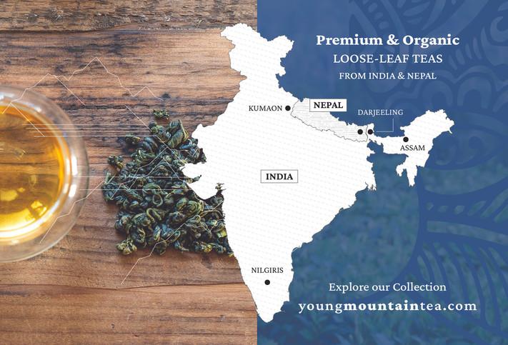 Young Mountain Tea Postcard - Back