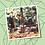 Thumbnail: PowerPoint Template Fotokader - Spinnenweb