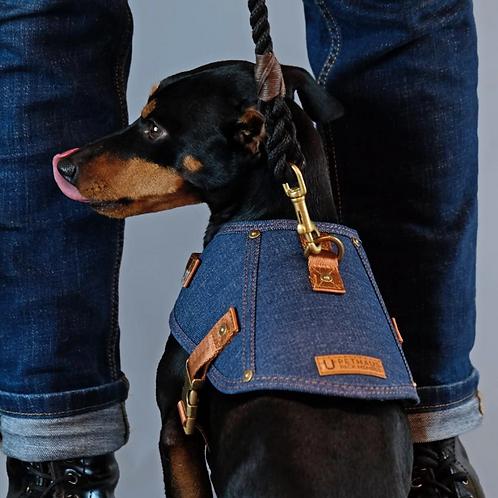 Denim Dog Harness