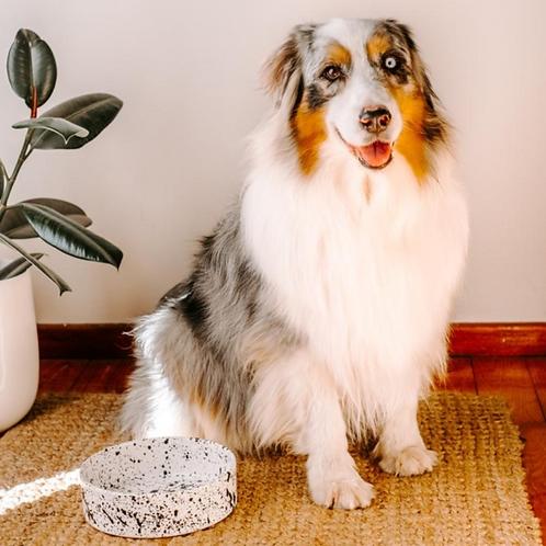 Galaxy Ceramic Dog Bowl