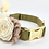 """Thumbnail: The """"Olive Green""""  Boho Pampas collar and lead set"""