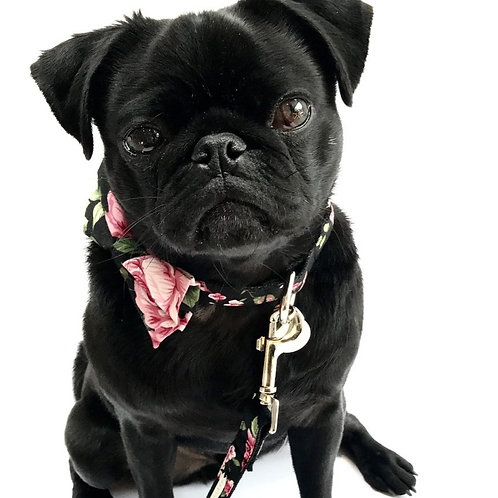 """The """"Chelsea"""" bow tie collar and lead set"""