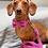 Thumbnail: Bella Harris Tweed Dog Collar
