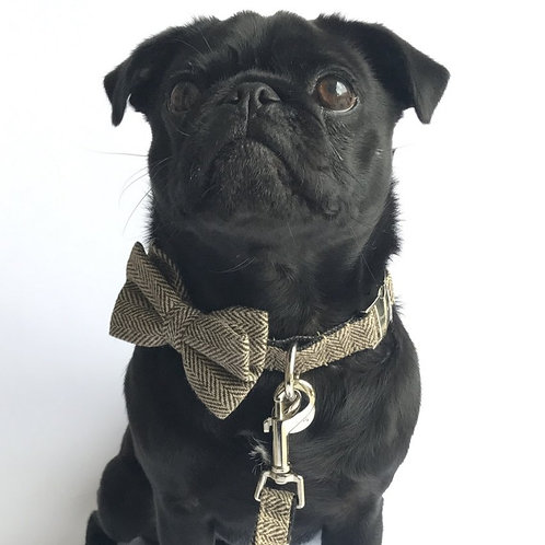 """The """"Beaufort"""" bow tie and lead set"""