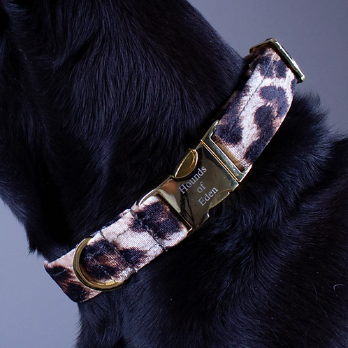 Leopard Vibes Dog Collar