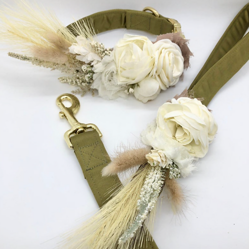 """The """"Olive Green""""  Boho Pampas collar and lead set"""