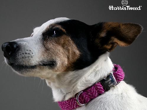Bella Harris Tweed Dog Collar
